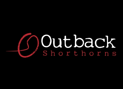 Outback Shorthorns